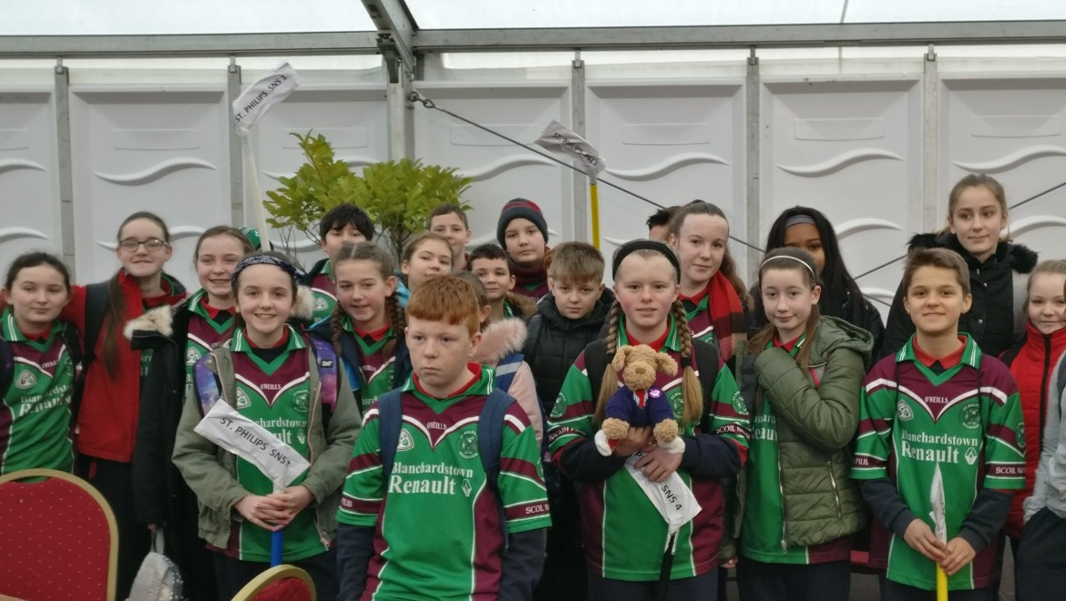 6th Class Trip to BTYSE in the RDS
